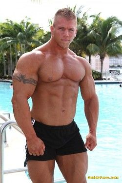 Gay muscle pix