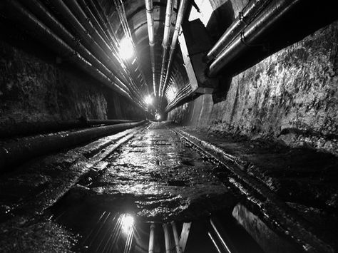 Chicago's underground freight tunnels. 40' below the surface, only 6' wide and 7' high.  Tiny trains traveled from basement to basement delivering mail to businesses, dropping of heating coal and hauling away cinders.  Construction began in 1899.  As businesses stopped heating with coal furnaces, the main excuse for its existence began to fade and the freight line faded with it, finally succumbing in 1959.  The tunnels were flooded in 1992.