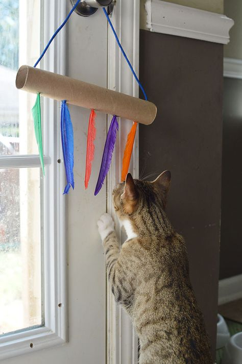 Cats Toys Ideas - This shop has been compensated by Collective Bias, Inc. and its advertiser. All opinions are mine alone. I grew up with dogs. We had two during the time I lived w… - Ideal toys for small cats Homemade Cat Toys, Diy Cat Toys, Cool Cat Toys, Kitten Toys, Kittens, Ideal Toys, Cat Room, Small Cat, Cat Crafts