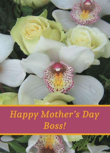 Boss Happy Mother Rsquo S Day Card White Orchid Card Ad Sponsored Mother Rsquo Boss Happy Happy Mother S Day Card Happy Mothers Day Orchid Card