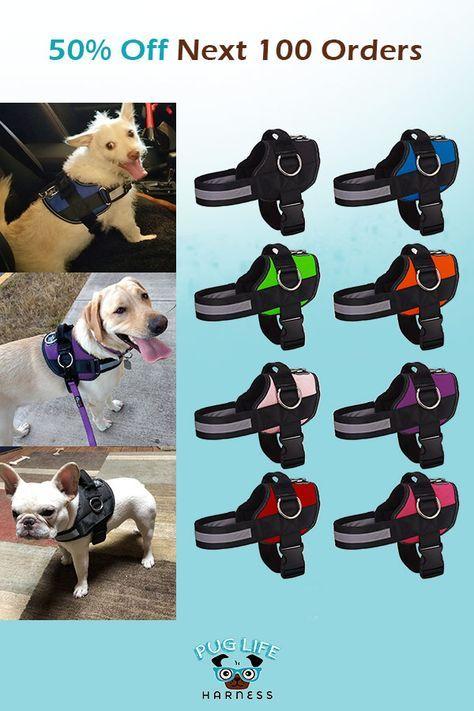 Small~No pull adjustable dog harness