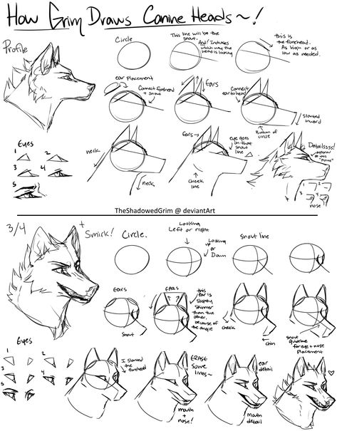 sketches step by step Canine heads step-by-step by TheShadowedGrim Animal Sketches, Art Drawings Sketches, Animal Drawings, Wolf Drawings, Art Reference Poses, Drawing Reference, Wolf Sketch, Furry Drawing, Wolf Head Drawing