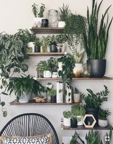 45 Easy Home Decorating Ideas Pinmagz House Plants Decor Boho Master Bedroom