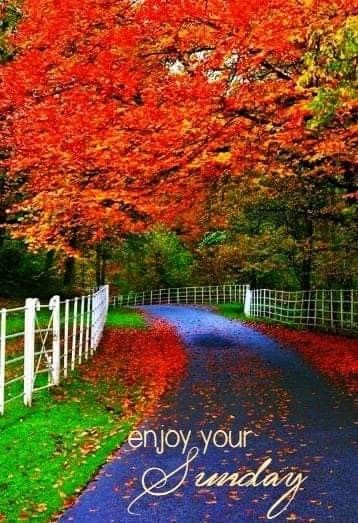 Pin By Maajid On Good Morning Wishes Kids House Good Morning Wishes Country Roads