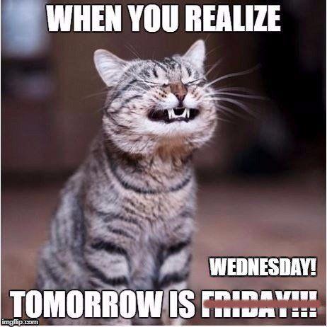Funny Wednesday Memes Funny Wednesday Memes Wednesday Memes Funny Minion Memes