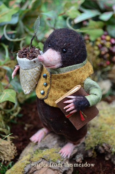 Felted Mole with Plant and Book felted hedgehog dressed