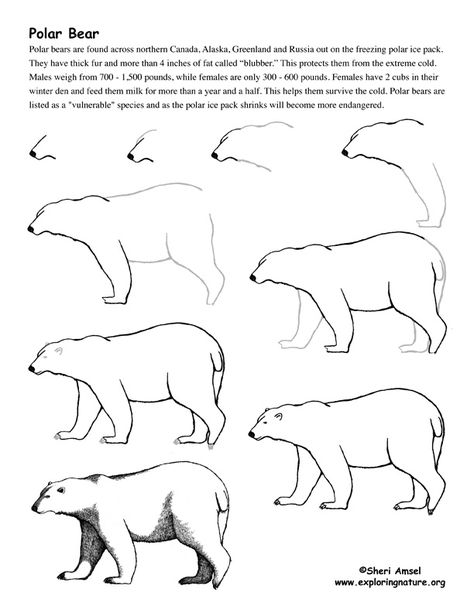 how to draw ..