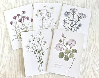 Coastal Wildflowers Illustrated Botanical Blank Greeting Card Set In 2020 Hand Illustration Flower Illustration Botanical Prints