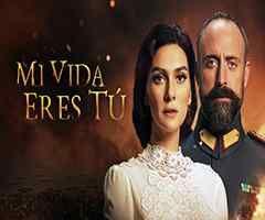 Sinopsis De La Telenovela Mi Vida Eres Tú Series Y Novelas Telenovela Actores