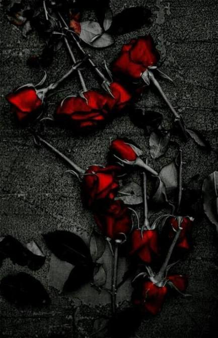 Super Dark Red Aesthetic Wallpaper Iphone 27 Ideas Wallpaper