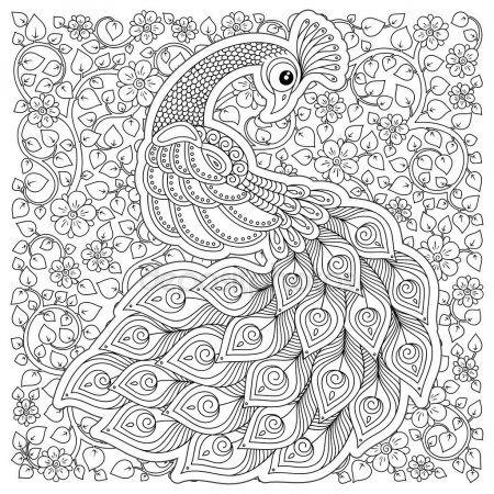(En iyisi) Tavuskuşu Boyama Sayfası