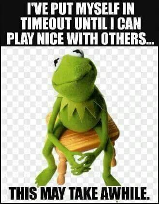 I put myself in timeout! Funny Kermit Memes, Funny Relatable Memes, Haha Funny, Funny Jokes, Funny Stuff, Funny Shit, Hilarious Sayings, Awesome Stuff, Tennis Funny