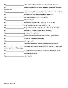 Sensation and Perception Part II Quiz or Worksheet for Psychology ...