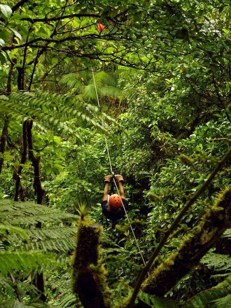 Soar through the rainforest canopy on a zip line with VBT in Costa Rica.
