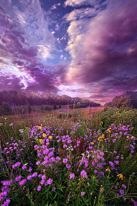 Simple Pleasures Spring Landscape Photography Landscape Photography Nature Nature Photography