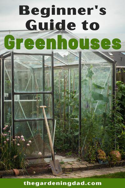10 Best Greenhouses For Gardeners 2020 The Gardening Dad