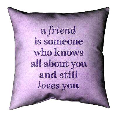 Sassy Friendship Quotes Funny Quote Pillow Covers Family Love Quotes Suede Pillows