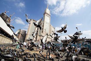 صور المسجد النبوي الشريف 2020 احدث خلفيات المسجد النبوي عالية الجودة Birds Flying Away Clock Tower Photo