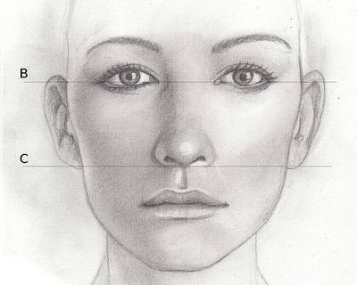 Drawing Lesson For Beginner Artists Proportions Of The Face Front View Step 10 The Ears Woman Face Face Pencil Drawing Face