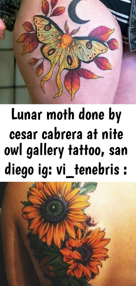 Lunar moth done by Cesar Cabrera at nite owl gallery tattoo, San Diego IG: vi_tenebris : tattoos Please check more!! Awesome The Five Reasons Tourists Love Japanese Sunflower Tattoo | japanese sunflower tattoo