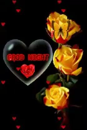 Whatsapp Video Good Night Flowers Gif Status Video Good Night Sweet Dreams Good Night Flowers Good Night Gif