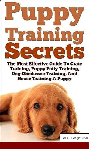 Training A Dog Not To Jump Fences And Pics Of How To Train Your