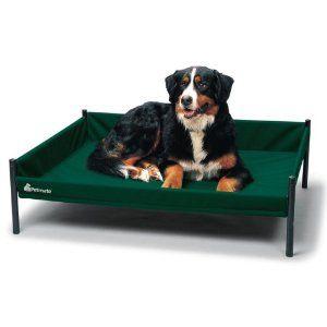Petmate Durabed Elevated Pet Bed Large Forest Green Misc Dog Beds Dog Dog Pet Beds Raised Dog Beds Pets