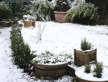 Giardino d'inverno, l'economia del dono / Winter Garden, The Gift Economy: la nuova mostra di Dryphoto a Prato