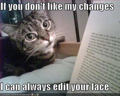 Hope My Teacher Likes This Funny Animal Pictures Cats Crazy Cats