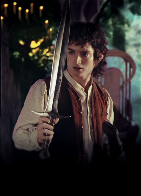 Frodo Baggins | Frodo Baggins - Lord of the Rings Wiki