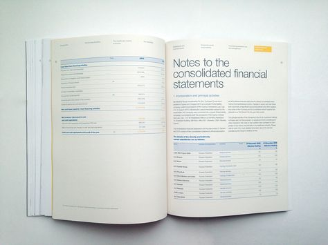 MD Medical Group Annual Report 2015 on Behance Editorial Pinterest - financial statement layout