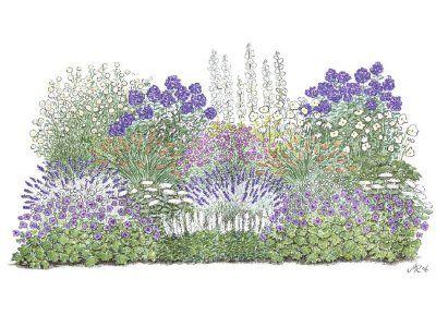 Charmantes Schattenbeet Bluten Blattschmuck Fur Lichtarme Gartenbereiche Gemeinsam Mit Dem Magazin Staudenbeet Stauden Blumenbeet Anlegen