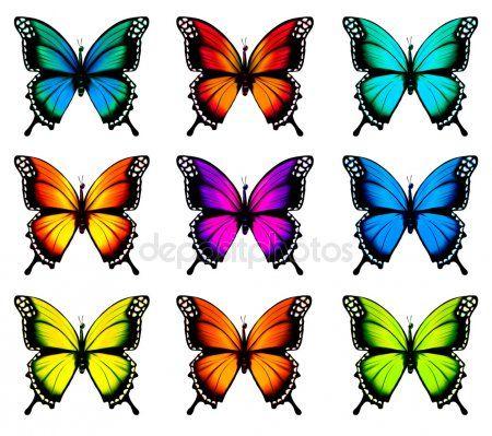Coleção De Borboletas Coloridas Voando Em Diferente