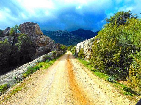 via http://ift.tt/1SUxv2J by SARDEGNA SHOP:  amzn.to/1Oi0lae Libri   amzn.to/1OqMw71 Musica   amzn.to/1OqMOLo Artigianato sardo   amzn.to/1OqMXyo Gioielli sardi   amzn.to/1P0SFwh Fotografia in Sardegna A crack in time. Part V  #vecchiaferrovia #ferrovia #monti #calangianus #telti #railroad #treno #escursione #trekking #gallura #sardegna #sardinia #italia #italy #natura #nature #country #campagna by silvia_amadori
