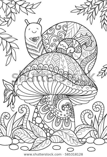Discover Inventory Photos Of Snail Sitting On Stunning Mushroom Tshirt Kostenlose Erwachsenen Malvorlagen Herbst Ausmalvorlagen Malvorlagen Tiere