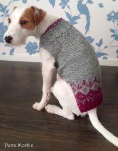Koiran Villapaidan Kutomisohje Knitting Animals Pattern