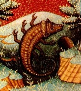 Scorpio three stages of The Nine