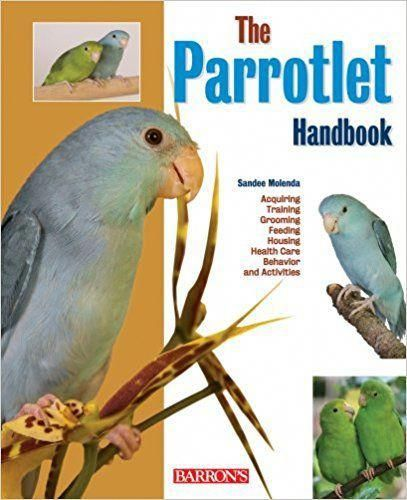 A list of birds for sale in oh ohio  A list of birds for