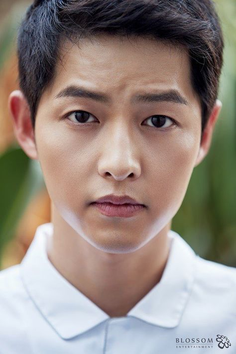 Song Joong-ki to Return to Small Screen After Marriage