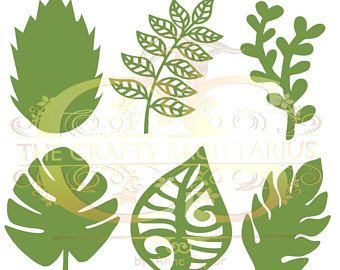 Svg Png Set 8 6 Different Leaves For Paper Flowers Machine Use
