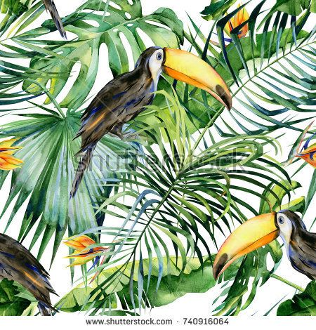 Image by Shutterstock Palm Leaves /& Toucan Women/'s Tee