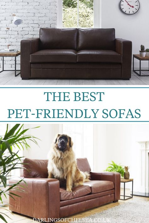 Fabric And Leather Sofas For Pet