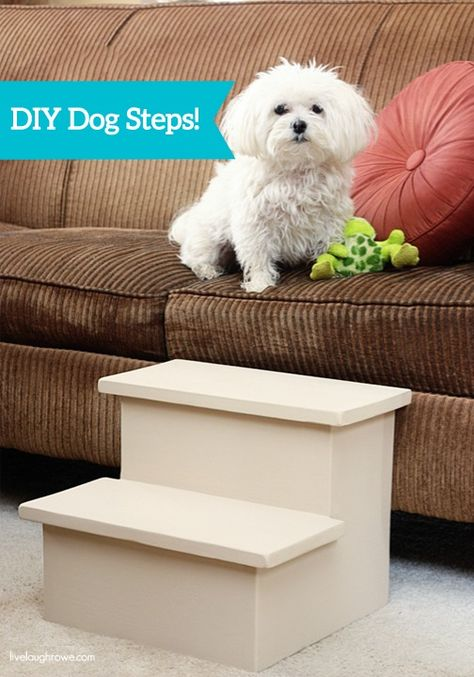 Check out this great advanced DIY project on how to make doggy steps. You and your pup will love this project once it's complete.