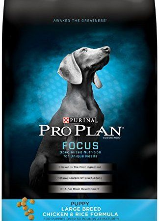 Purina Pro Plan Focus Puppy Large Breed Chicken Rice Formula Dry Dog Food 1 34 Lb Bag Large Breed Puppy Food Dog Food Recipes Puppy Food