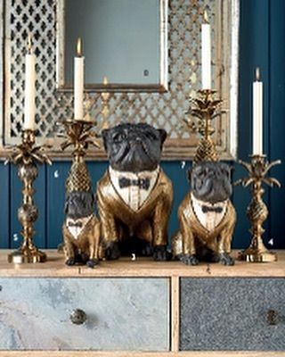 Look At These Busters Bulldog Bouncers Art And Accessories