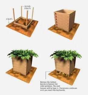 Wie Man Eine Kartoffelbox Baut Und Gebraucht Diy Pflanzideen Pflanzen Gartenarbeit