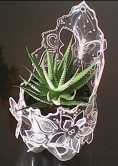 A cute and creative plant pot made from a plastic bottle