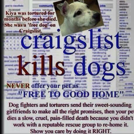 Free To Good Home Kills Dogs Pets Cruel Dogs