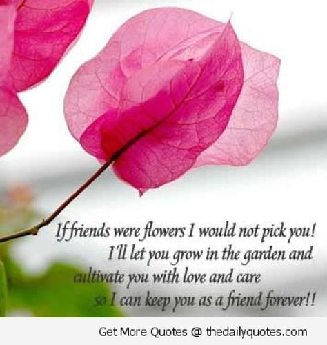 friendship like a flower quotes quotes about flowers and