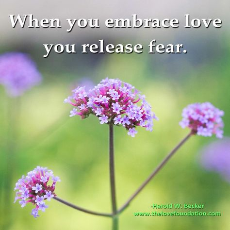 When you embrace love you release fear.-Harold W. Becker #UnconditionalLove www.thelovefoundation.com